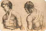 Image: Bell, J. (1815). The principles of surgery, as they relate to wounds, ulcers and fistulas ... vol. 1. London : Longman, Hurst, Rees, Orme and Brown. [Detail].